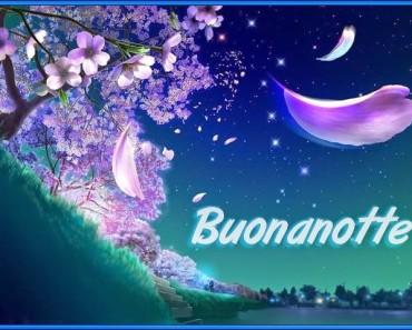 Buonanotte Bella Scaricala Gratis Immagini Buonanotte